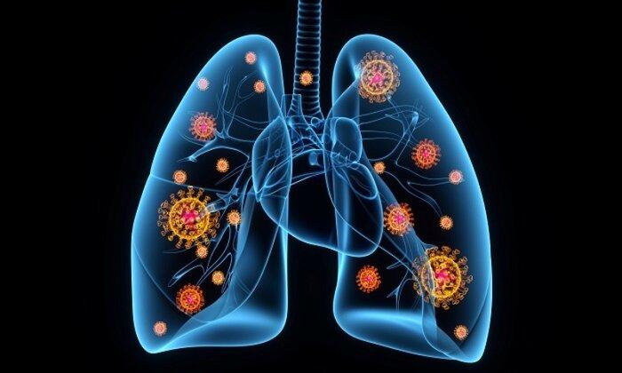 تقویت سلامت ریه ها با مصرف این مواد غذایی
