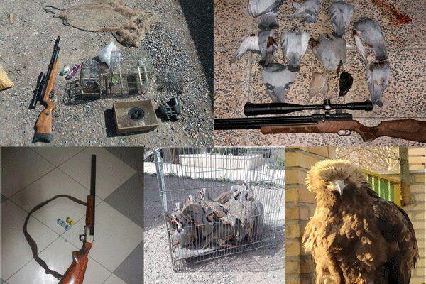لاشه ۱۷قطعه پرنده وحشی از یک شکارچی در نکا کشف شد