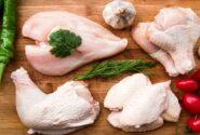 مرغ ارزان میشود