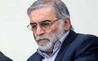 ترور دانشمند هسته ای ادامه فشار حداکثری علیه ایران بود