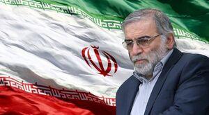 شهید محسن فخریزاده که بود و چگونه ترور شد؟ + فیلم