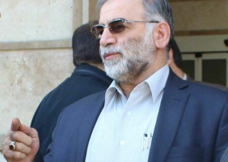 سازمان انرژی اتمی : ادعای ملاقات شهید فخری زاده با آمانو کذب است
