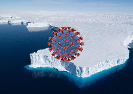 کرونا به قطب جنوب هم رسید / از بین رفتن شانس ایمنی گله ای با ویروس انگلیسی