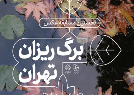 زیبایی عکاسی در «برگریزان تهران»/ عکس ما را در زمان حفظ میکند