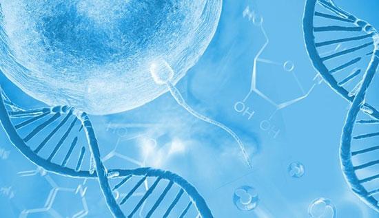 آزمایش اسپرم و تفسیر نتایج آن