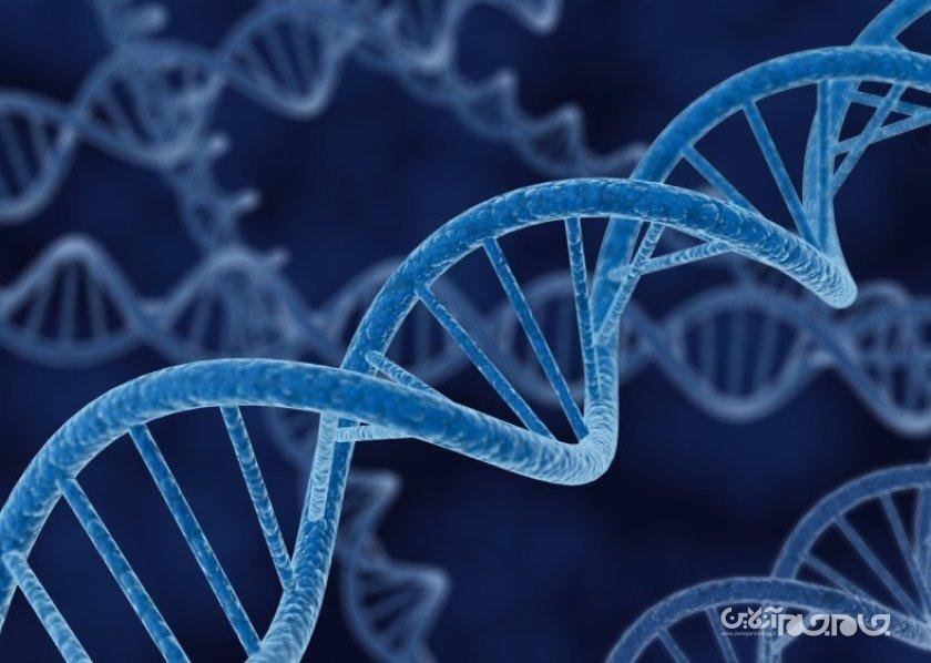 موفقیت پژوهشگران در کنترل عملکرد DNA با استفاده از نور+عکس