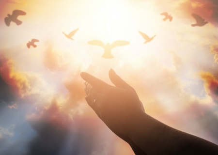 ده قدم برای جذب فراوانی و برکت به زندگیتان