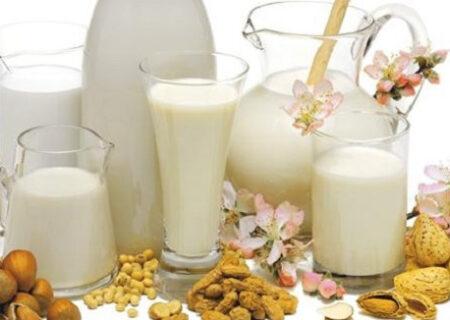 طرز تهیه شیر گیاهی و انواع آن
