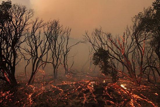 تغییر اقلیم چیست ؛ تغییرات آب و هوایی و تاثیر عجیب آن بر زندگی انسان