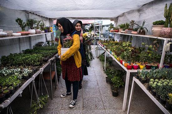 بهترین بازارهای گل تهران