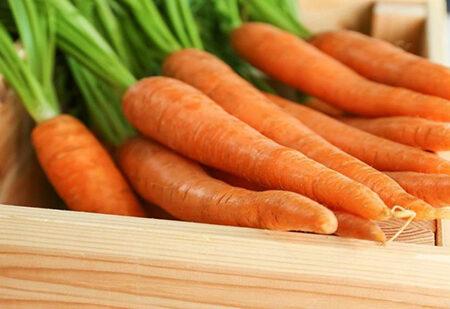 چگونه هویج را در یخچال نگهداری کنیم؟