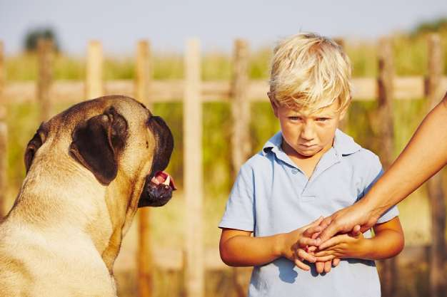ترس از حیوانات در کودکان