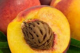 هسته این میوه ها موجب مسمومیت شدید می شود