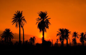 گرم ترین شهر ایران، کدام شهر است؟