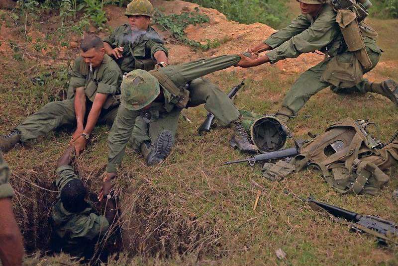 مارها درجنگ ویتنام
