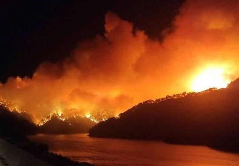 آتش سوزی بزرگ در ترکیه به همراه فیلم
