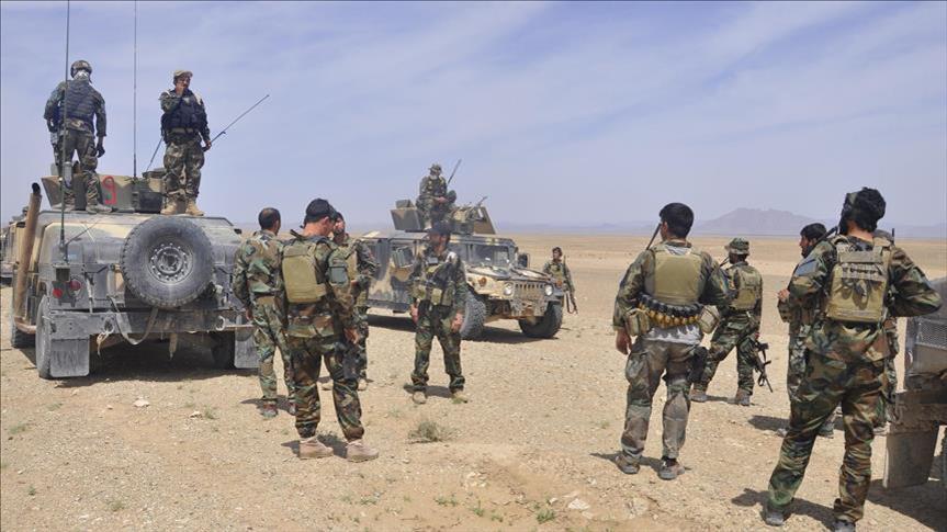 ۹۶۷ نفر از نیروی طالبان کشته شدند!