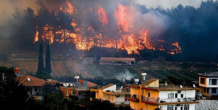 فیلم لحظه دستگیری دو تن از عاملان آتش سوزی های عمدی در ترکیه