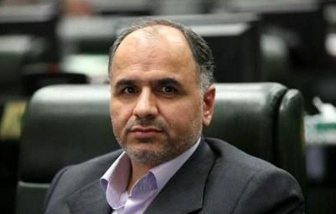 وزیر دادگستری: سرخابیهای پایتخت در همین دولت خصوصی میشوند