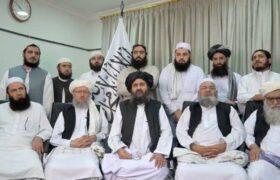 طالبان و واکسیناسیون سراسری/تغییر صدوهشتاد درجه طالبان نسبت به واکسن
