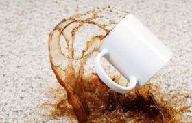 چگونه لکه های قهوه و نسکافه را از روی فرش پاک کنیم؟ / 10 راهکار موثر