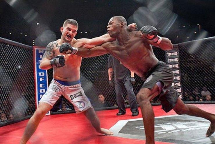 ورزشی MMA