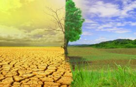 خشکسالی بزرگ می آید!
