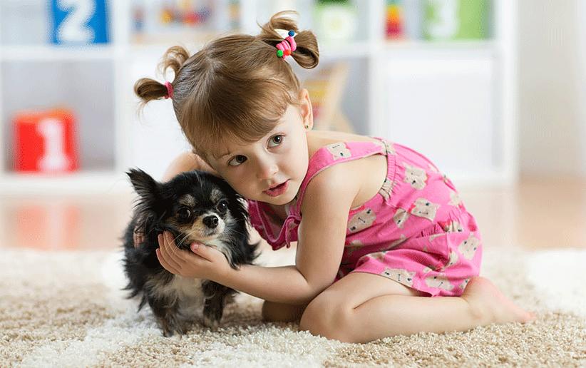 کودکان و میکروب ها/حیوانات خانگی
